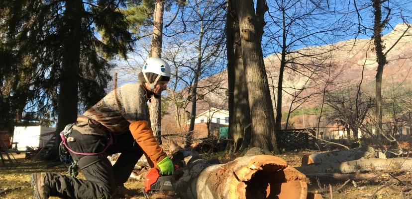 Stockage du bois sur place