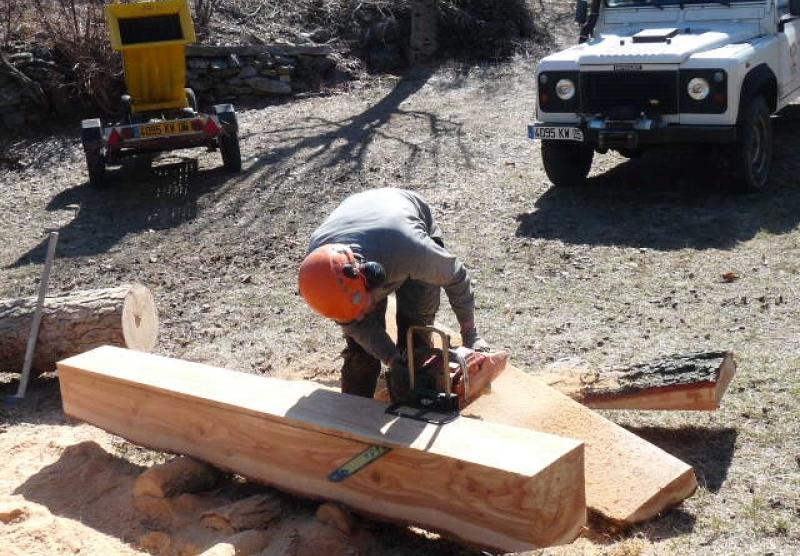 Délignage des arbres abattus en planches