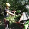 Stéphane, Homme de pied. Gère notamment la valorisation des arbres abattus, la mini-scierie